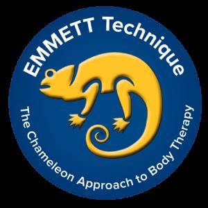 Logo technique EMMETT